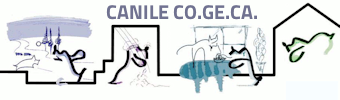 Canile CO.GE.CA